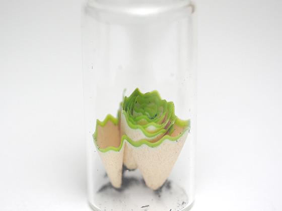 ぬめっとした樹脂感もまた標本瓶に合う。