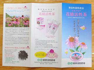 エキナセアのパンフレット。お茶は50グラムで千円なのだそう。高価!