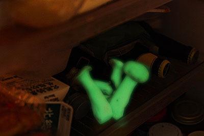 実は冷蔵庫の中ではこんな感じに光っているんだろう?(写真はイメージです)