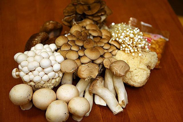 ズラリと並べたら、部屋に菌類の匂いが充満した。梅雨だし部屋にキノコが生えないか心配。