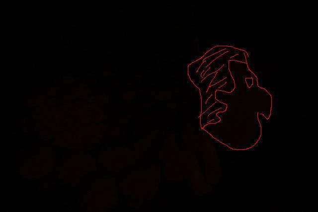 男の横顔が写っているのが確認出来るだろうか?ここにあったのは山伏茸とエノキである。きっと山伏のなにかが写ったのだ。