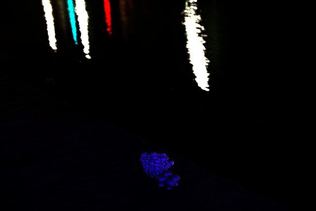 水辺で妖しく光るブナピーとマッシュルーム。(そして僕の靴は犬の糞くさい)