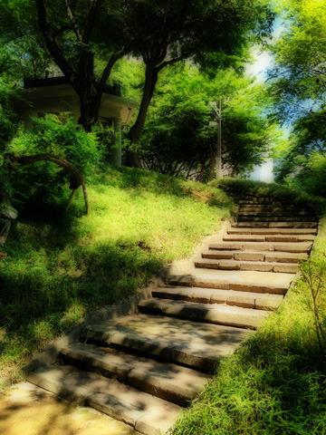 悠久の歴史を刻んできた石造りの階段
