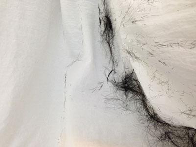 カットされた髪の毛の量=お姉さんの気持ちの量と解釈
