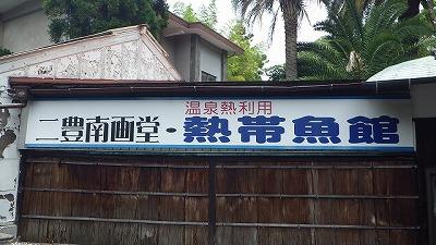ここで唐突に「熱帯魚」の文字!