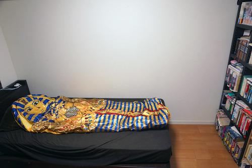 せっかくなのでカーメンを寝かせてみた。