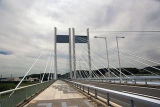 是政橋を威風堂々と闊歩。