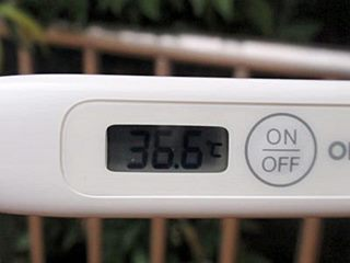 体温36.6℃(黒)