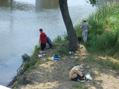 日中、特に休日はブラックバスやコイ、テナガエビ等を狙う釣り人で賑わう。