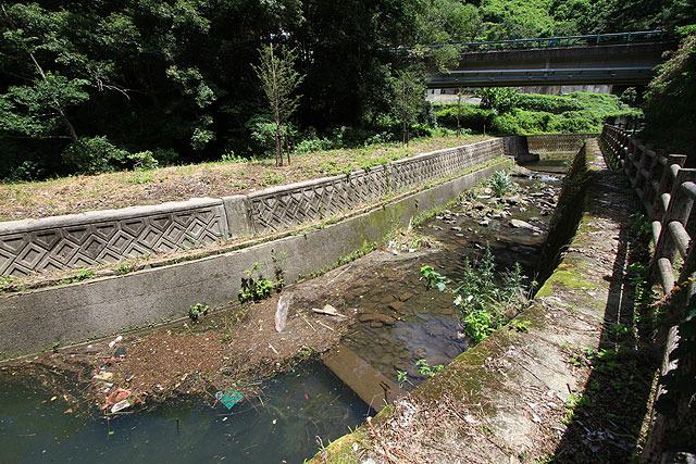 蛍が住む川というときれいな印象があるが、意外と汚かった。