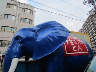 駅前、不動産屋のディスプレイの象が印象的でした。