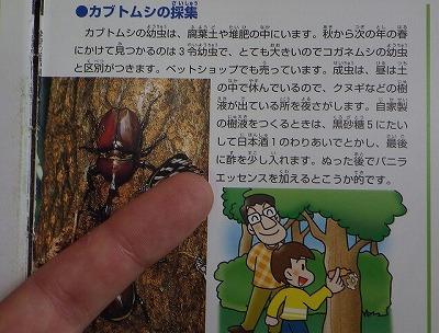 「日本酒と黒砂糖、それに酢とバニラエッセンスで人工的に樹液を作り木に塗る」とある。