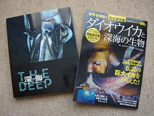 超保存版。左が特別展の図録。右はダイオウイカのポスターとシール付き!