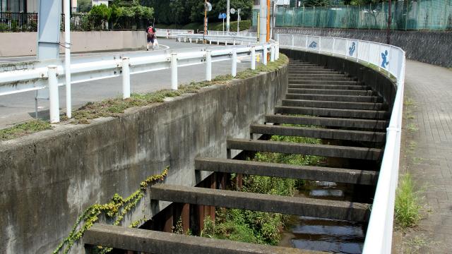 そこら辺にあるドブ川の源流は、一体どうなっているのだろう