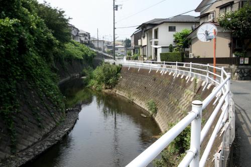 市街地河川の例に漏れず、ガッチリ護岸されている