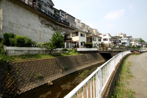 コンクリートの壁がそそり立つ、河川風景