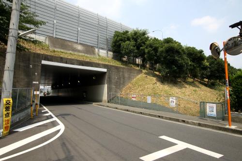 東名高速道路の高架を潜る部分は完全なる暗渠だ