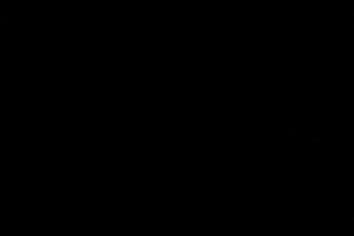 真っ暗。もはや露光を上げてもサイケデリックになるだけだった。