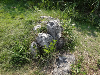 足元に石灰岩