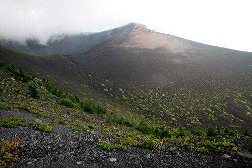 どどーんとすり鉢状に広がる、宝永火口の第二火口だ。正面には噴火で形成された宝永山が見える(雲で見えないが、富士山はこの左側にそびえている)