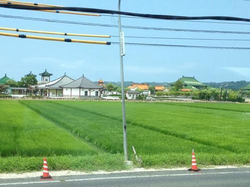 松江に向かう車内。スタバっぽい色合いではある。