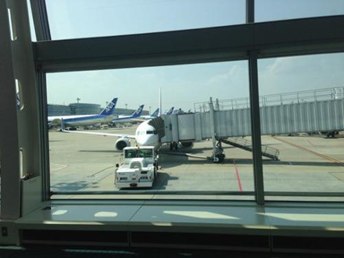 飛行機、がんばりすぎだ。