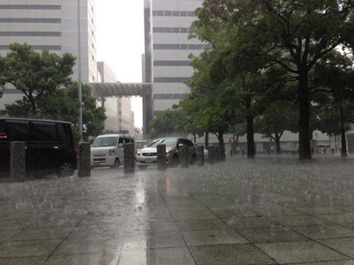 そしてこの大雨である。