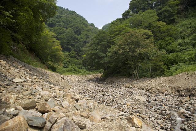 そしてこの川の上流の荒れ方がひどかった