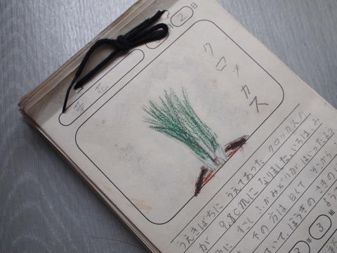 「天気しらべ・実験・観察カード」。こちらはふだんの日課だったらしく、春~冬まで1年分ある。