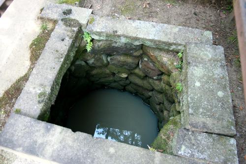 武田氏の生活用水に使われていたのだろうか。井戸も残る