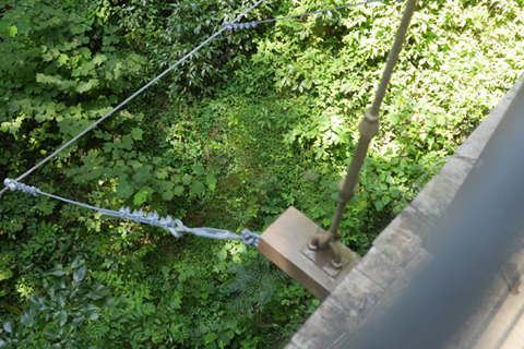 吊り橋からのアー。渓谷になってて音の反響は心地よいが……