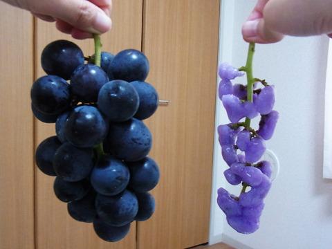 山梨の農家でとれたブドウが、別のものに生まれ変わりました