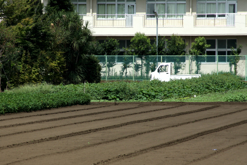 しかし、農作業をする人々の軽トラ率は異常だ