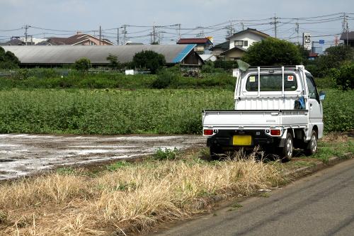 荷台の土を落とす為か、ホウキを装備している軽トラも多い
