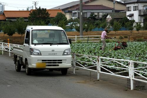 収穫時だけでなく、耕耘機などを運ぶ手段としても大活躍
