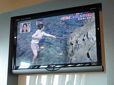 高速船の中でやっていたテレビでたまたま粟島のタコ捕りが生中継されていた。なんとなく運命を感じる。