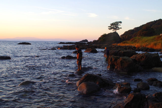 このロケーションで、磯釣りではなく磯ダコ捕りというのが粟島っぽい。