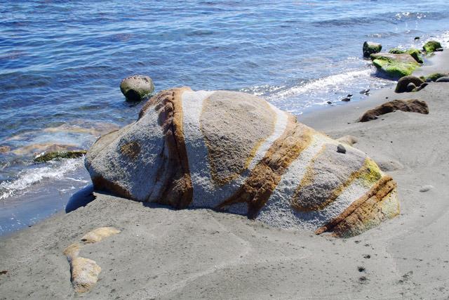 フェリー乗り場から海に向かって右にずっと歩いていくとあるアゲハチョウの幼虫そっくりの奇石。ナウシカのオウムっぽくもある。