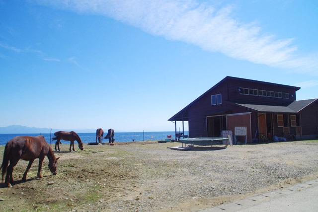 海沿いにあるあわしま牧場</a>。ものすごくいいロケーション。