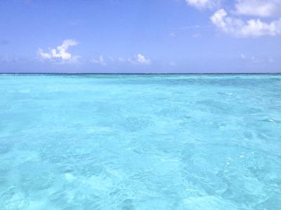 これは宮古島沖の八重干瀬