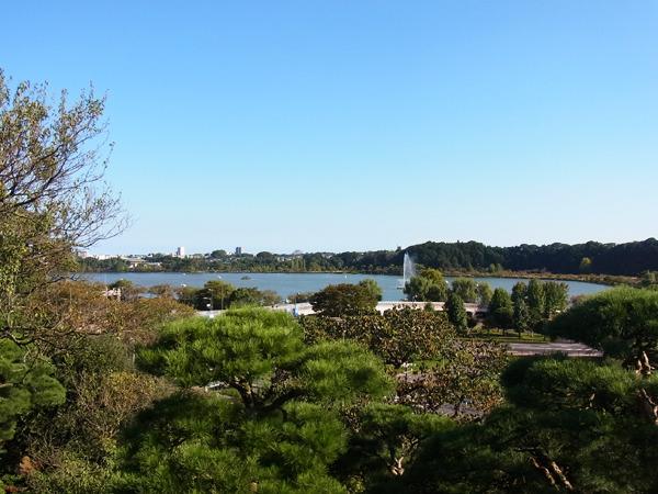 湖あった、確かにいい景色!