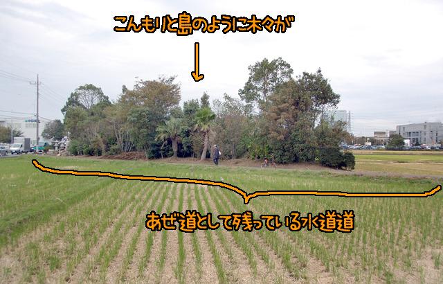 水道管の上は田んぼにできなかったので、不思議に斜めに走るあぜ道として残っている。