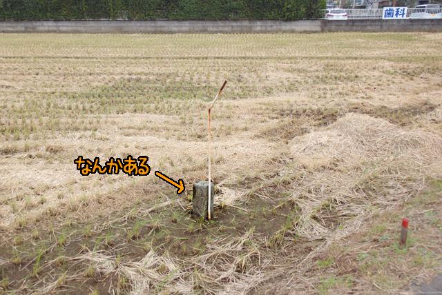 その田んぼの中になにやら標石が。