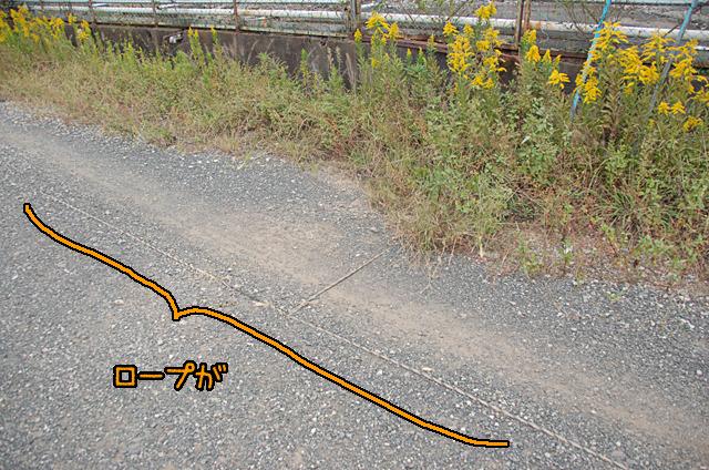途中、未舗装の区間があって、みると路面にロープが。