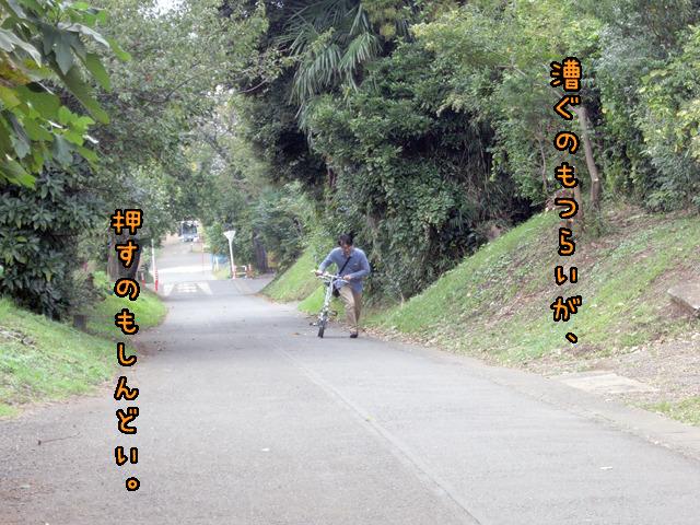 自転車って坂になったとたんやっかいものになるよね。