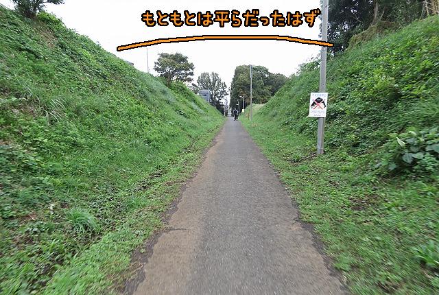 丘の上に水道管を、位置エネルギーを無駄にせず埋めるために切り開いた跡なのだった。