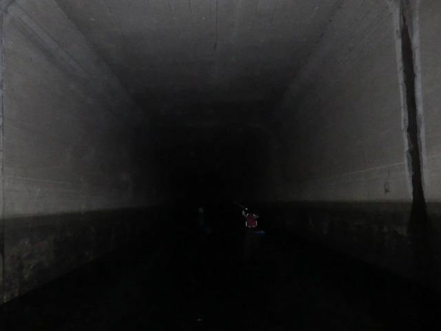 そして暗い。