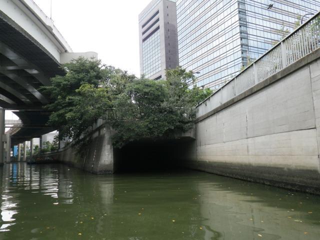 これが水道橋分水路のもうひとつの入り口(地図E地点)