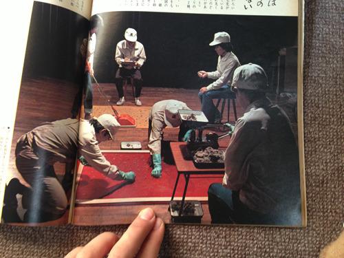 77年49号「じゅうたん用そうじきをふつううの掃除機とくらべる」