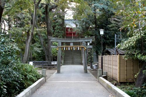 参道が真っ直ぐに伸び、石段の上に社殿が建つ